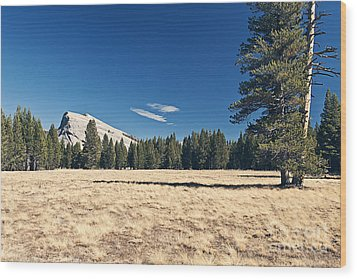 Lambert Dome In Yosemite National Park Wood Print by Justin Paget