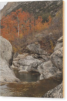 Lamoille Canyon Colors Wood Print