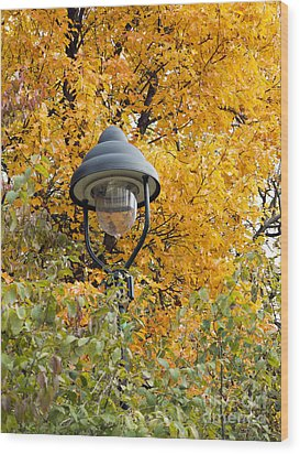 Lamp In The Autumn Leaves Wood Print by Michal Boubin