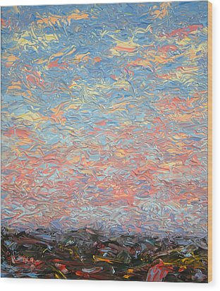 Land And Sky 3 Wood Print by James W Johnson