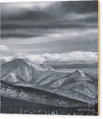 Land Shapes 4 Wood Print by Priska Wettstein