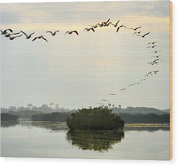 Landing Pattern Wood Print by William Beuther
