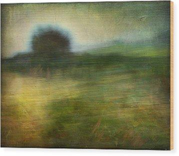 Wood Print featuring the photograph Landscape #24. Paper Dreams by Alfredo Gonzalez