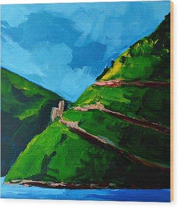 Landscape Castle Along The River Rhine Wood Print by Patricia Awapara