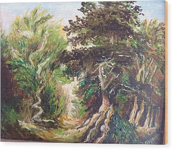 Landscape Wood Print by Egidio Graziani
