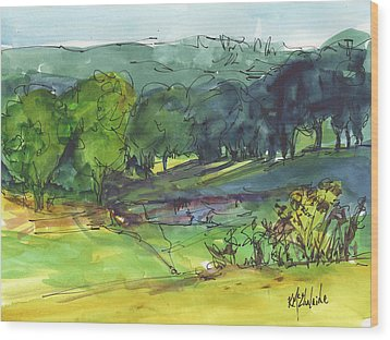 Landscape Lakeway Texas Watercolor Painting By Kmcelwaine Wood Print