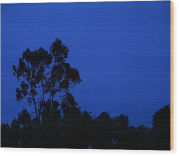 Wood Print featuring the photograph Blue Landscape by Mark Blauhoefer