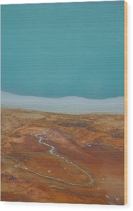 Landscape Of A Hot Spring Wood Print by Sarah Crites