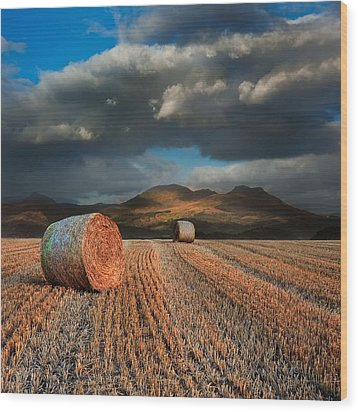 Landscape Of Hay Bales In Front Of Mountain Range With Dramatic  Wood Print by Matthew Gibson
