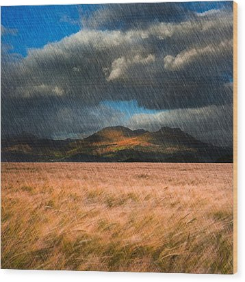 Landscape Of Windy Wheat Field In Front Of Mountain Range With D Wood Print by Matthew Gibson