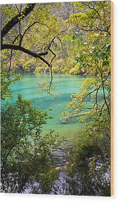 Landscape Photostories Of Tibet Jiuzhaigou Wood Print by Sundeep Bhardwaj Kullu sundeepkulluDOTcom