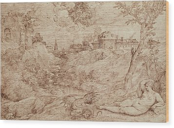 Landscape With A Dragon And A Nude Woman Sleeping Wood Print by Titian