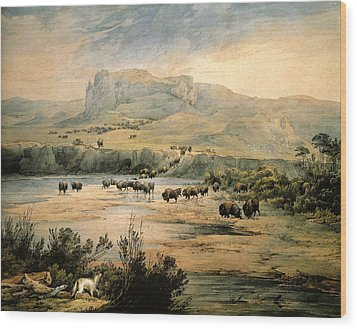 Landscape With Buffalo Ont The Upper Missouri Wood Print by Karl Bodmer