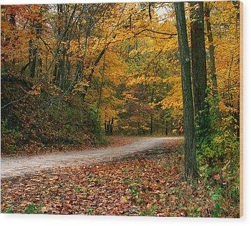 Lane In Fall Wood Print