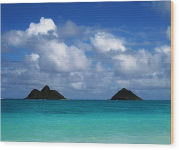 Lanikai Wood Print by Art Shimamura