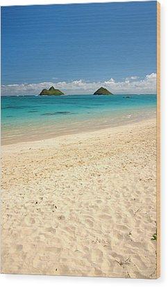 Lanikai Beach 2 - Oahu Hawaii Wood Print by Brian Harig