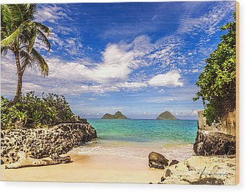 Lanikai Beach Cove Wood Print