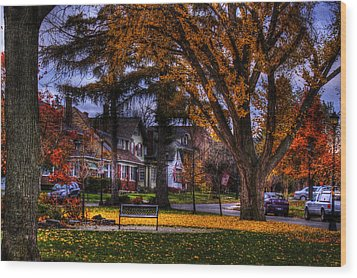 Wood Print featuring the photograph Larchmont-radcliffe Park by Don Nieman