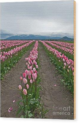 Large Pink Tulip Field Wood Print by Valerie Garner