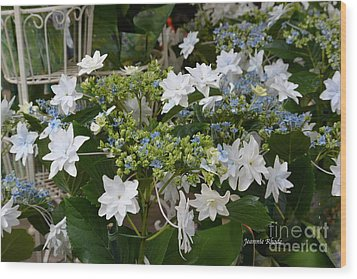 Wood Print featuring the photograph Shooting Star Bouquet by Jeannie Rhode