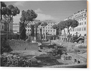 Largo Di Torre - Roma Wood Print by Dany Lison
