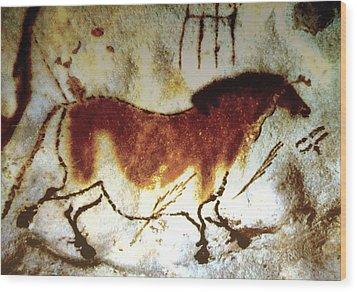 Lascaux Horse - Version 2 Wood Print