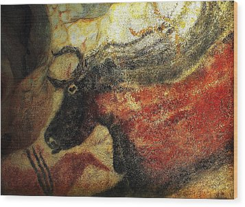 Wood Print featuring the photograph Lascaux II Number 2 - Horizontal by Jacqueline M Lewis