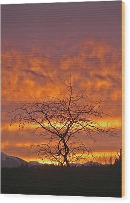 Wood Print featuring the photograph Last Dance by Laurie Stewart