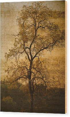 Last Fall Wood Print by Lena Wilhite