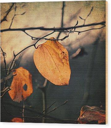 Last Leaves Wood Print by Taylan Apukovska