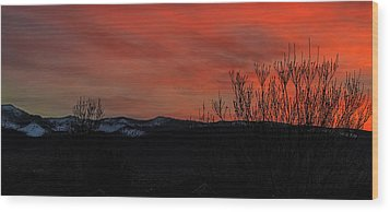 Wood Print featuring the photograph Last Light by Nancy Marie Ricketts