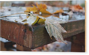Last Of The Leaves Wood Print by Gwyn Newcombe