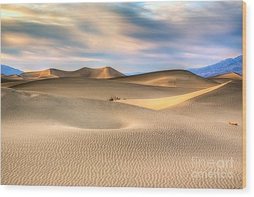Late Afternoon At The Mesquite Dunes Wood Print