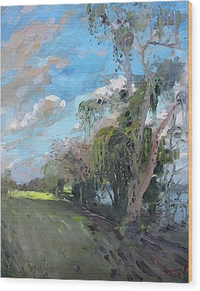 Late Afternoon By Niagara River Wood Print by Ylli Haruni