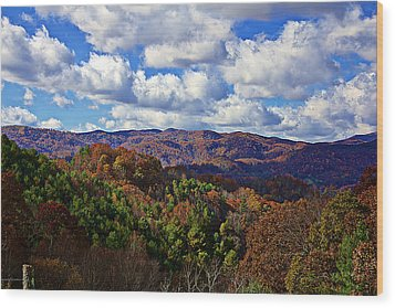 Late Autumn Beauty Wood Print by Tom Culver