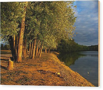 Late Evening On White River Wood Print by Julie Dant
