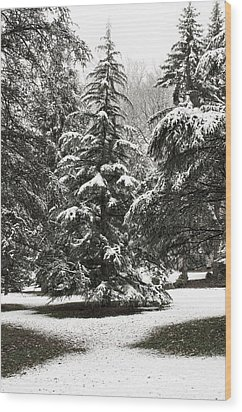 Late Season Snow At The Park Wood Print by Gary Slawsky