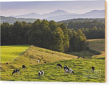 Late Summer Countryside Wood Print by Alan L Graham