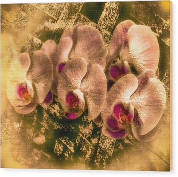 Late Summer Orchids Wood Print by Jill Balsam