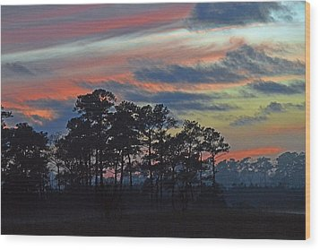 Wood Print featuring the photograph Late Sunset Trees In The Mist by Bill Swartwout