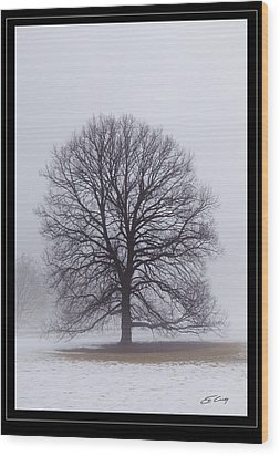Late Winter Fog   Framed Wood Print