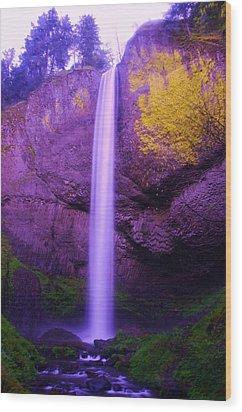 Latourall Falls Wood Print by Jeff Swan
