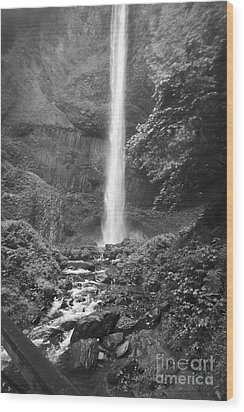 Latourelle Falls 10 Wood Print by Rich Collins