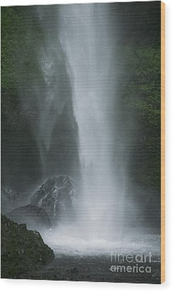 Latourelle Falls 5 Wood Print by Rich Collins