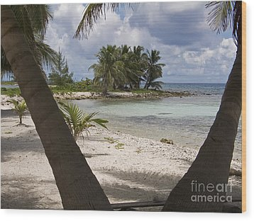Laughing Bird Caye Wood Print by Jim West