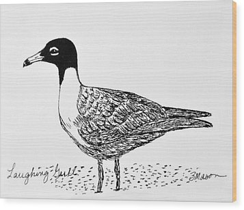 Laughing Gull Wood Print by Becky Mason