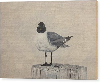 Wood Print featuring the painting Laughing Gull by Stan Tenney