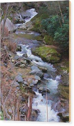 Laurel Creek  Wood Print by Tom Culver