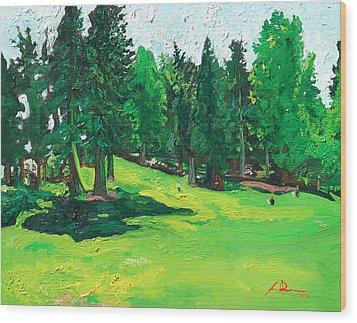 Laurelhurst Park Wood Print by Joseph Demaree