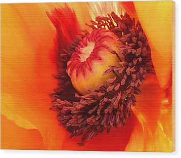 Lava Flow Wood Print by Connie Handscomb